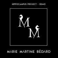 hippocampusproject-cover