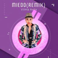 miedo-remix