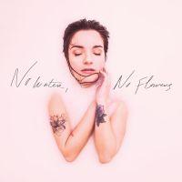 nowaternoflowers-cover